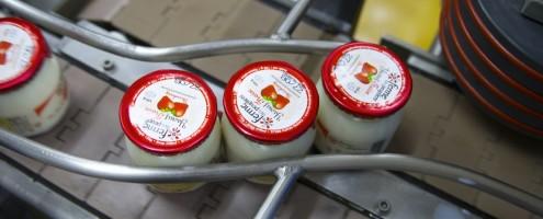 Milk becomes yoghurt