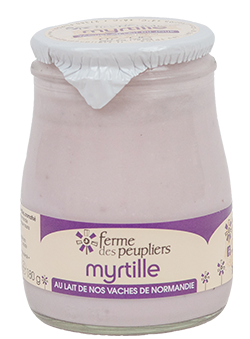 Yaourt Myrtille