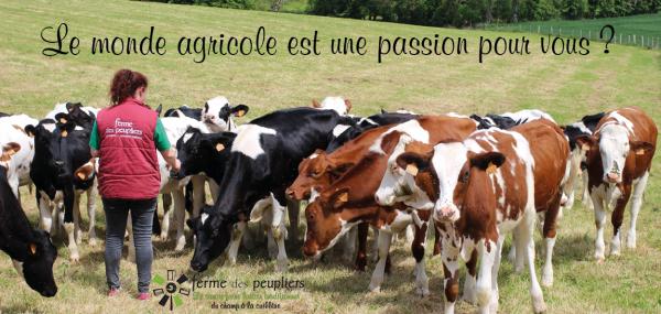 Annonce - recrutement agent d'élevage laitier